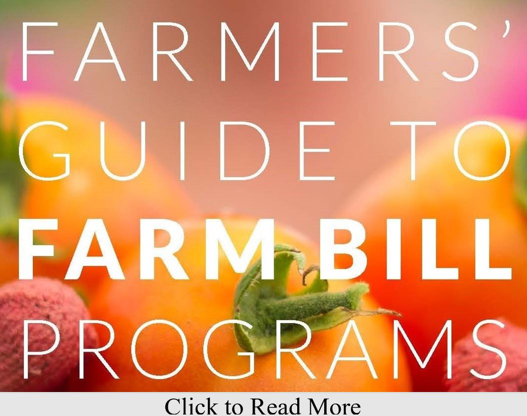 Farm Bill 2018 Guide Cover x 2